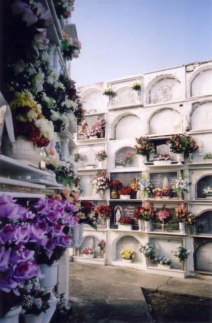 白い壁に美しい色合いの花が供えられた墓地