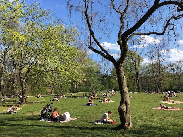 青空の下、緑地でくつろぐ人達