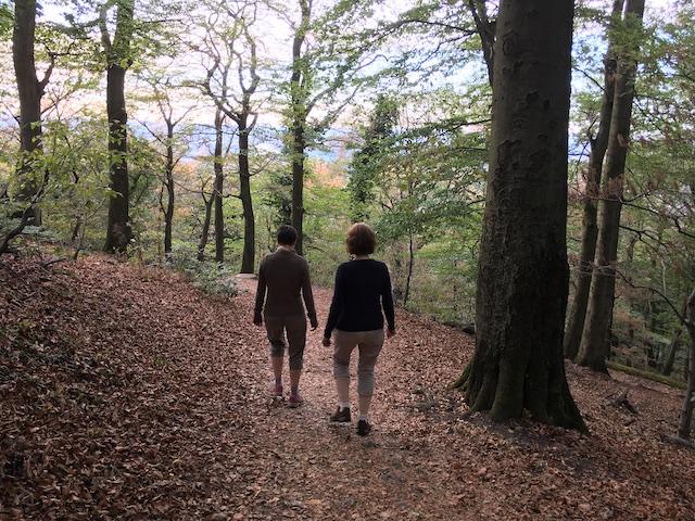 落ち葉を踏みしめながら歩くドイツ人2人