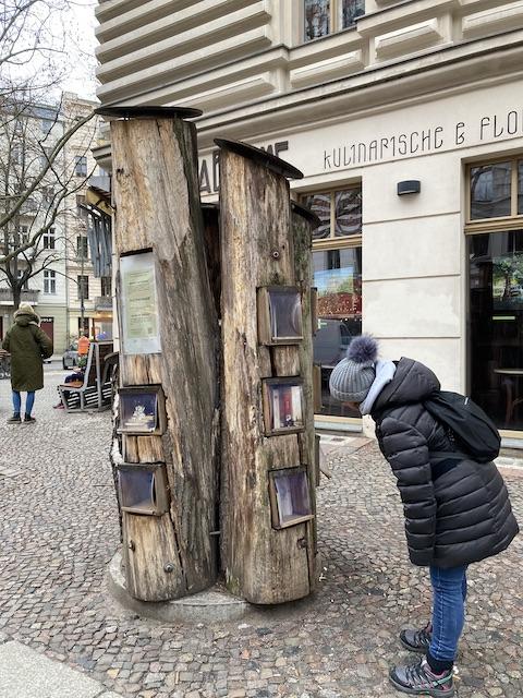 何本かの木の幹にスペースが掘られ、本が並べられている