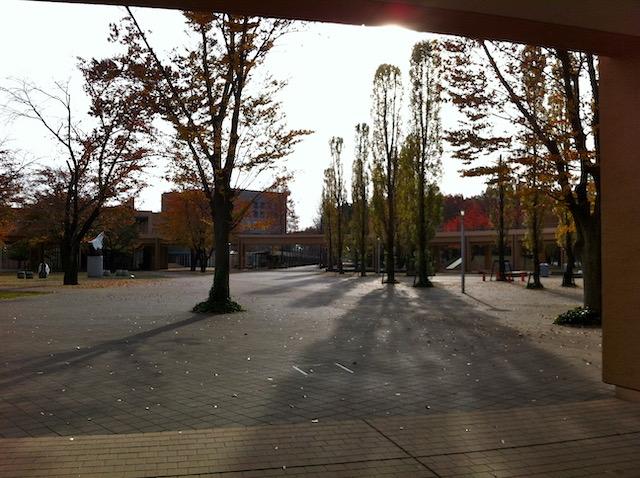色づいた木がぽつぽつと並び、円形の歩道橋に囲まれた広場