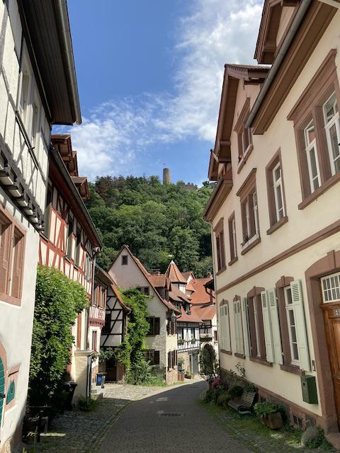 狭い街路から見える、山の上の古いお城