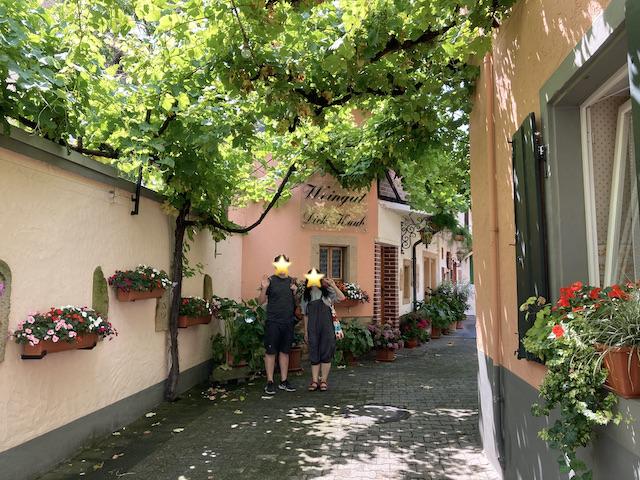 ワイナリーの素敵な中庭