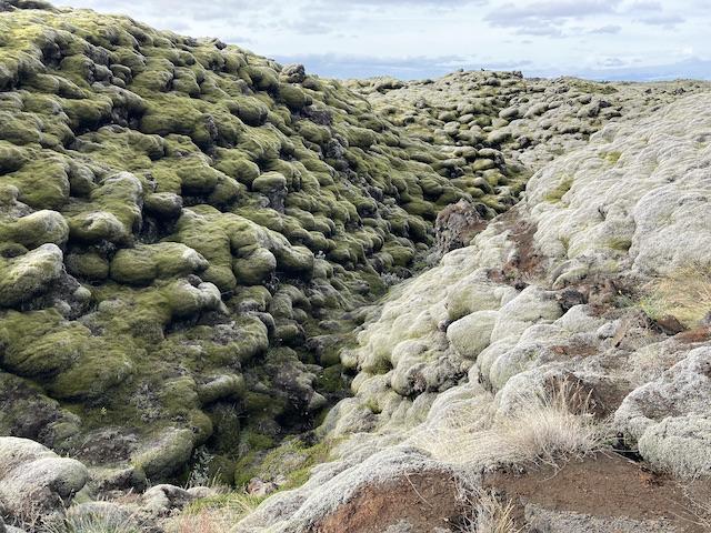 緑と灰色がかった苔に覆われた溶岩